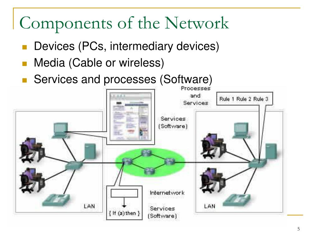 Components of the Network