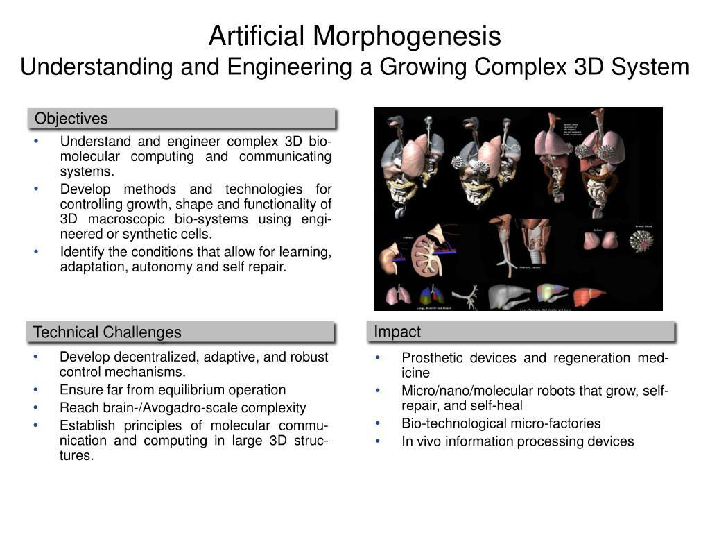 Artificial Morphogenesis