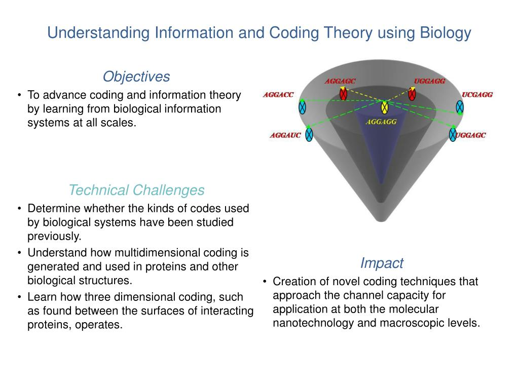 Understanding Information and Coding Theory using Biology