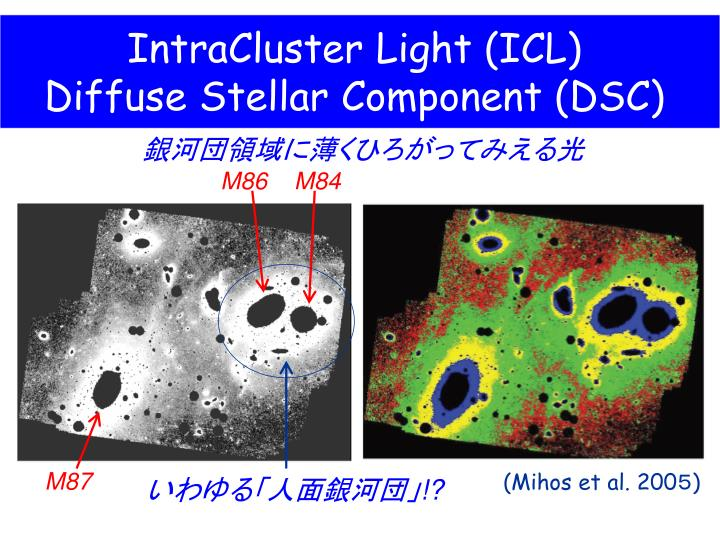 Intracluster light icl diffuse stellar component dsc