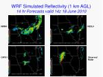 wrf simulated reflectivity 1 km agl 14 hr forecasts valid 14z 18 june 2010