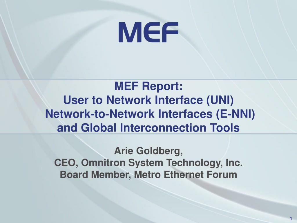 MEF Report: