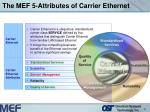 the mef 5 attributes of carrier ethernet