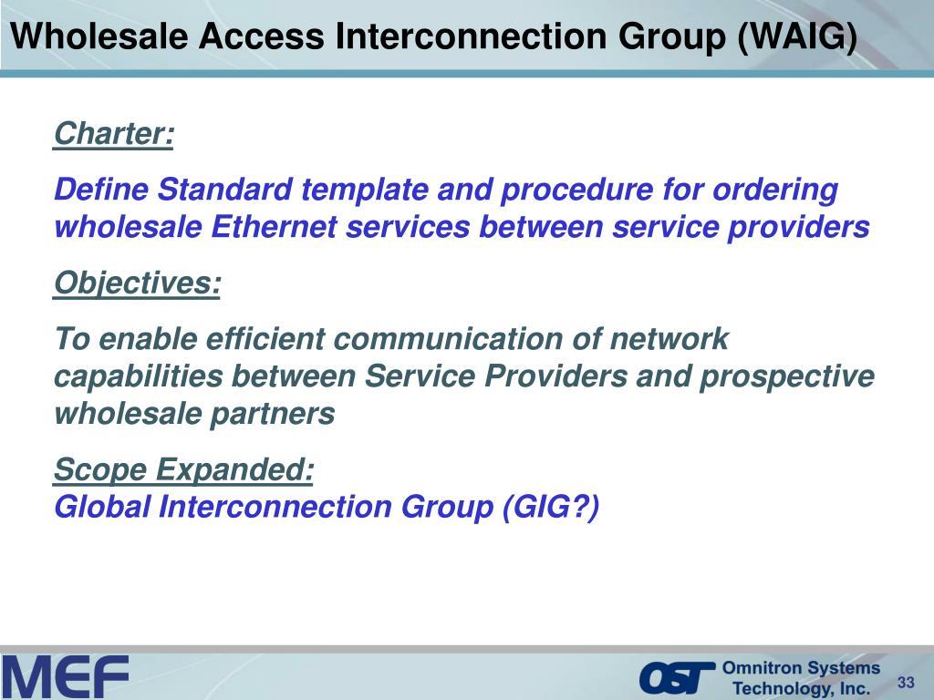 Wholesale Access Interconnection Group (WAIG)