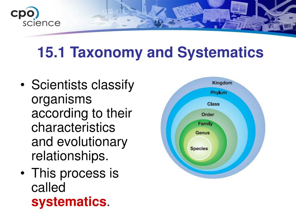 15.1 Taxonomy and Systematics