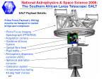 salt payload details