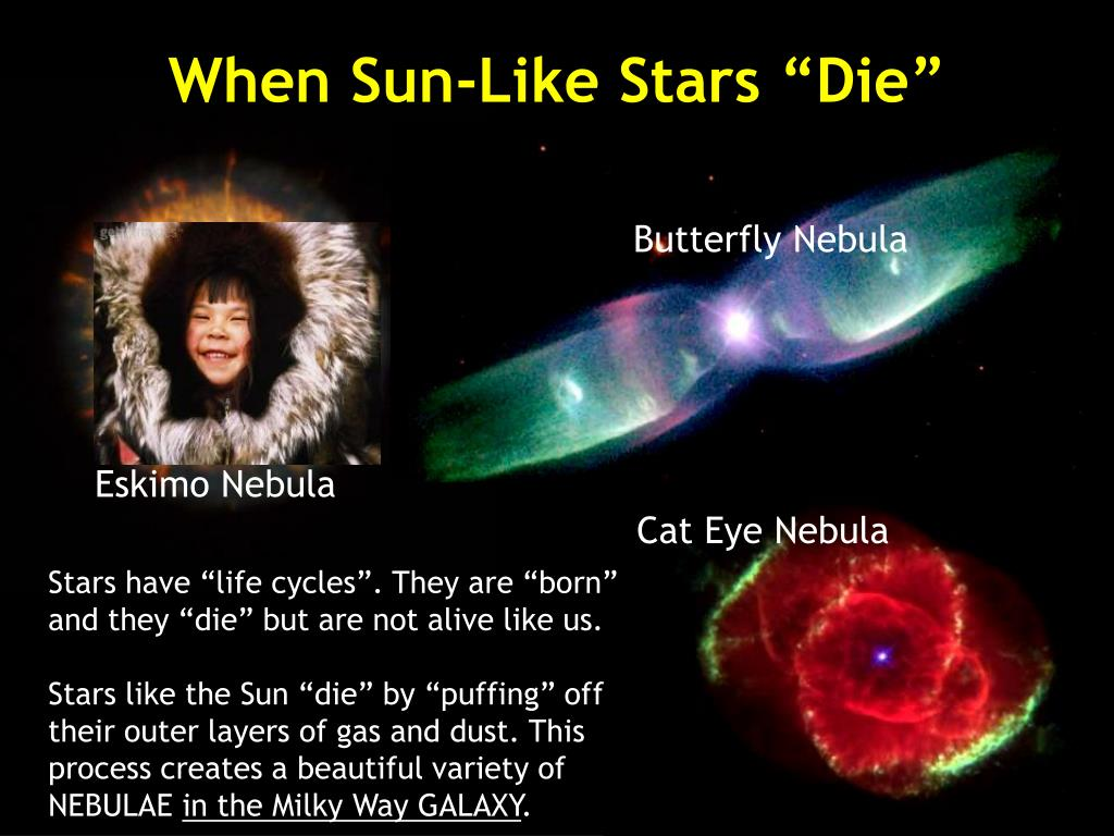 "When Sun-Like Stars ""Die"""