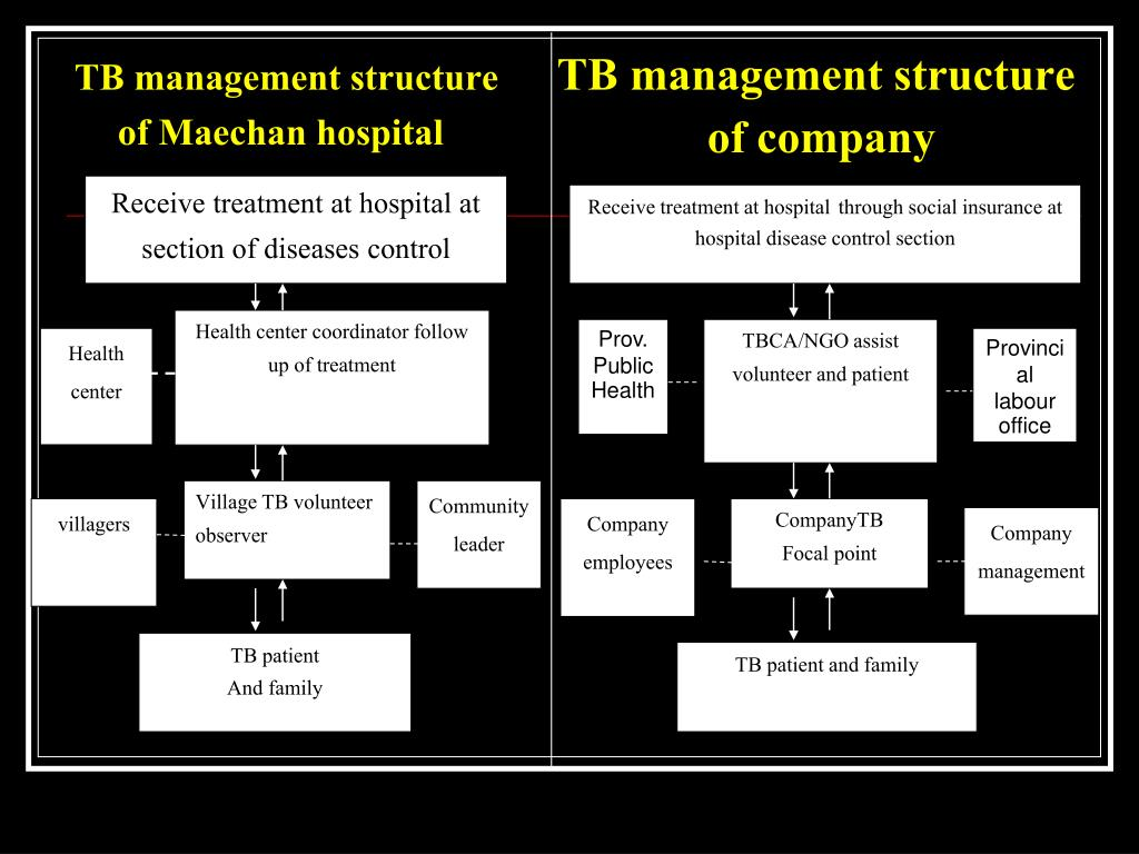 TB management structure of Maechan hospital