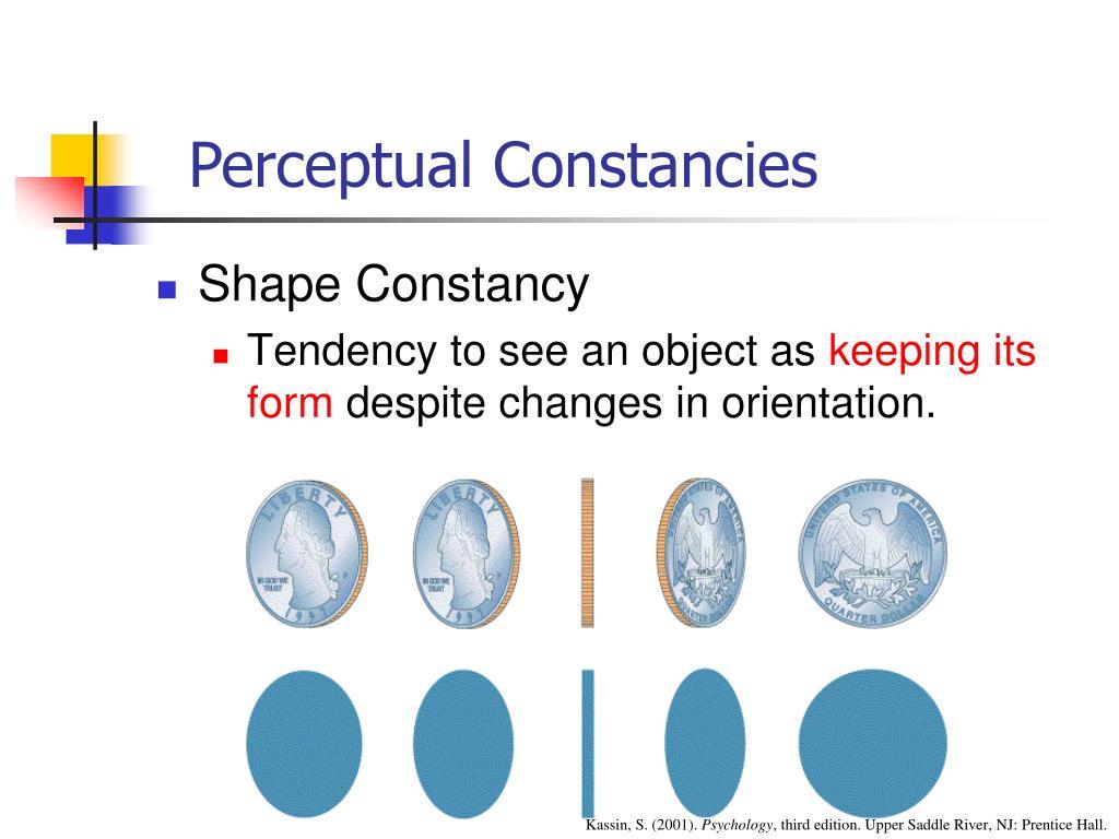 Perceptual Constancies
