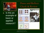 pause and reflect check review