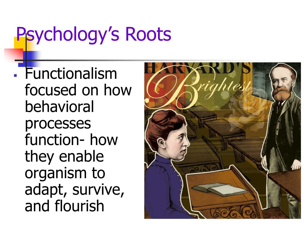 Psychology's Roots
