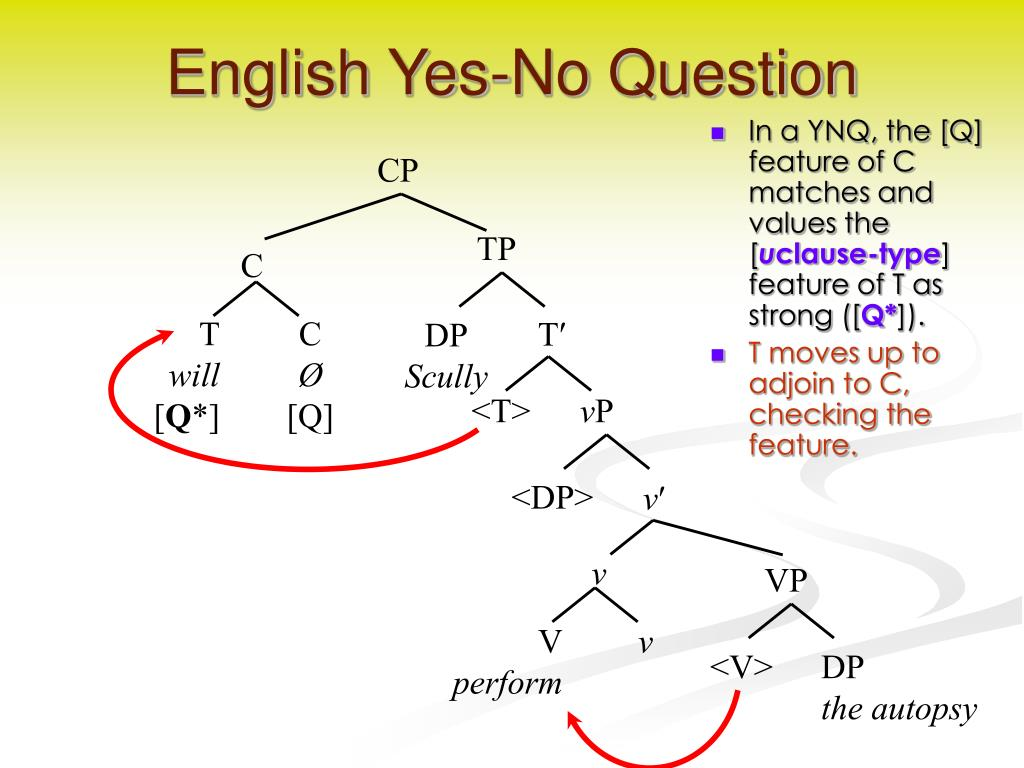 English Yes-No Question