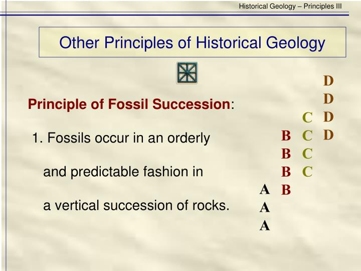 Other principles of historical geology3