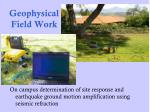 geophysical field work39