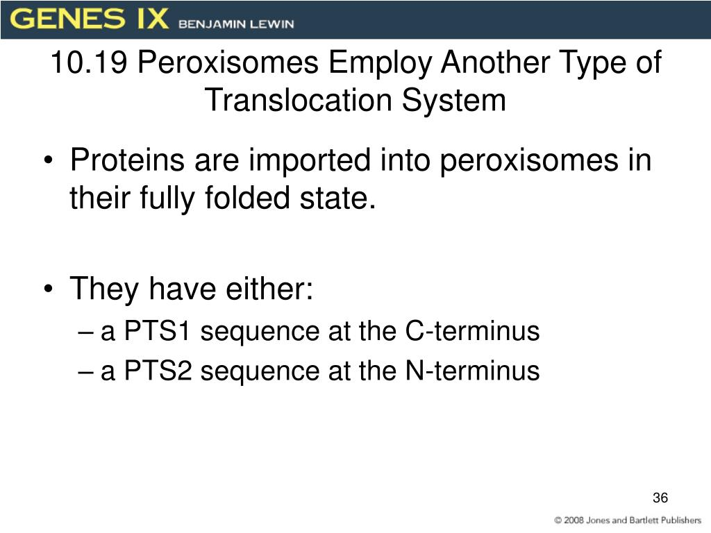 10.19 Peroxisomes Employ Another Type of