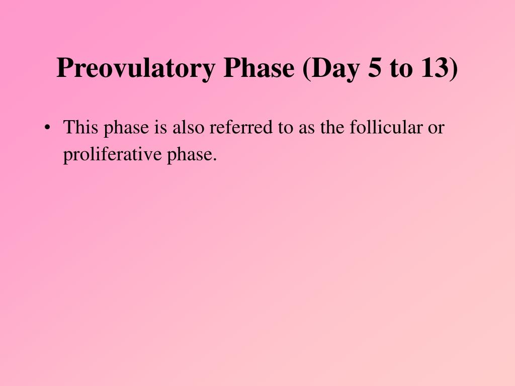 Preovulatory Phase (Day 5 to 13)