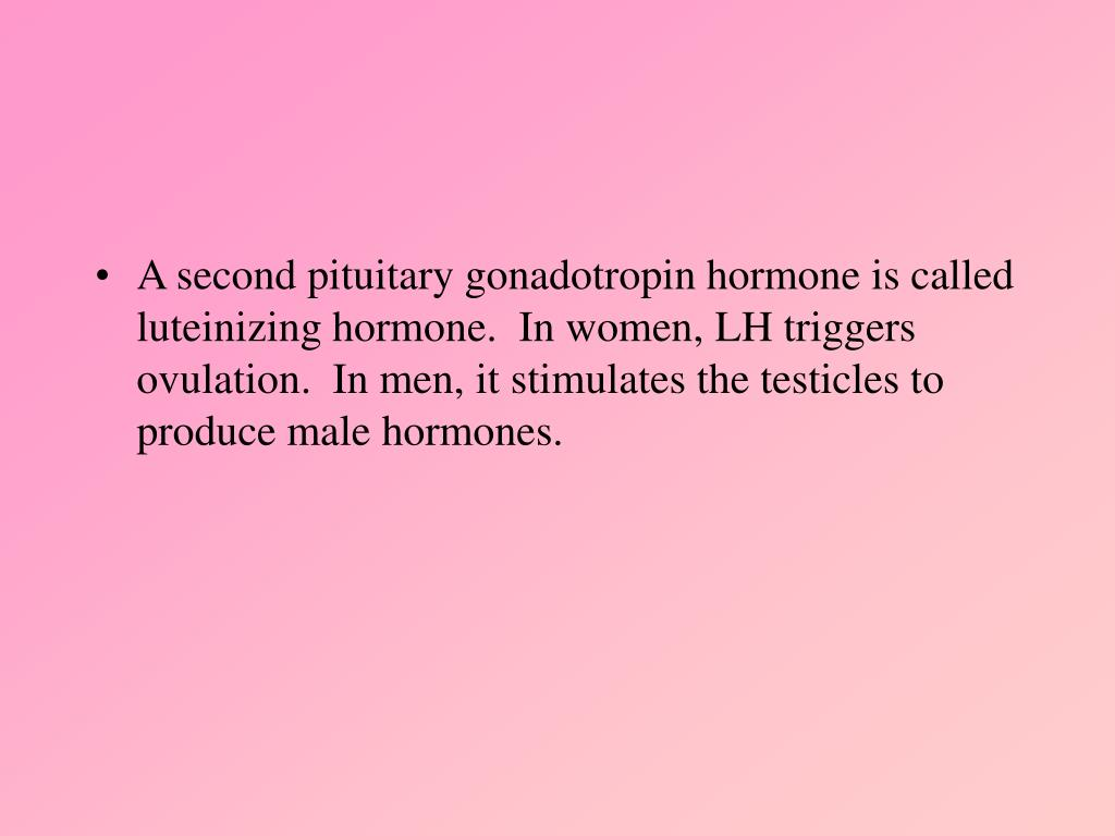 A second pituitary gonadotropin hormone is called luteinizing hormone.  In women, LH triggers ovulation.  In men, it stimulates the testicles to produce male hormones.