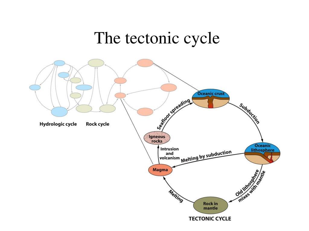 The tectonic cycle