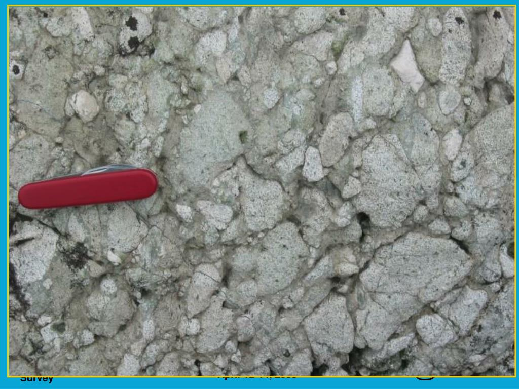 Alkalic metavolcanic rocks