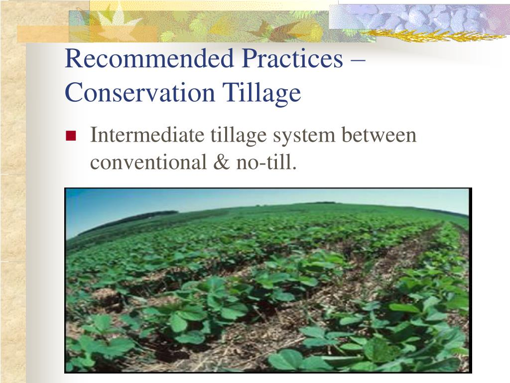 Recommended Practices – Conservation Tillage