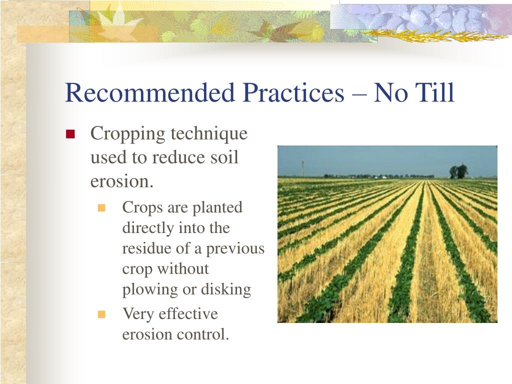 Recommended Practices – No Till