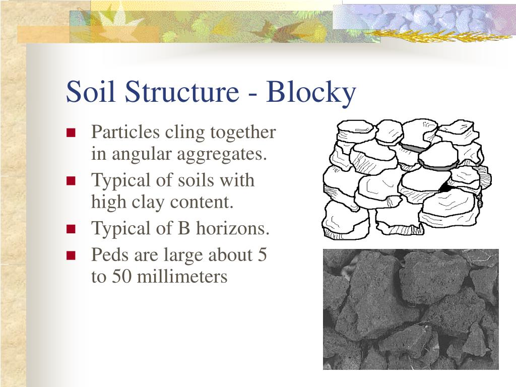 Soil Structure - Blocky