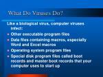 what do viruses do