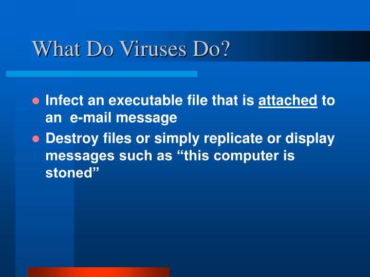 What Do Viruses Do?