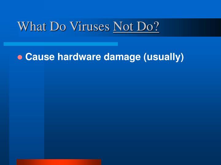 What Do Viruses