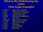what is my child saying on line chat lingo examples