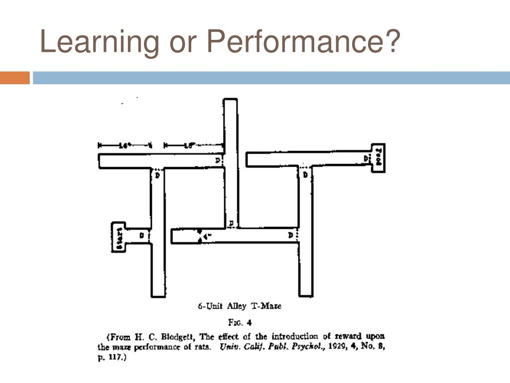 Learning or Performance?