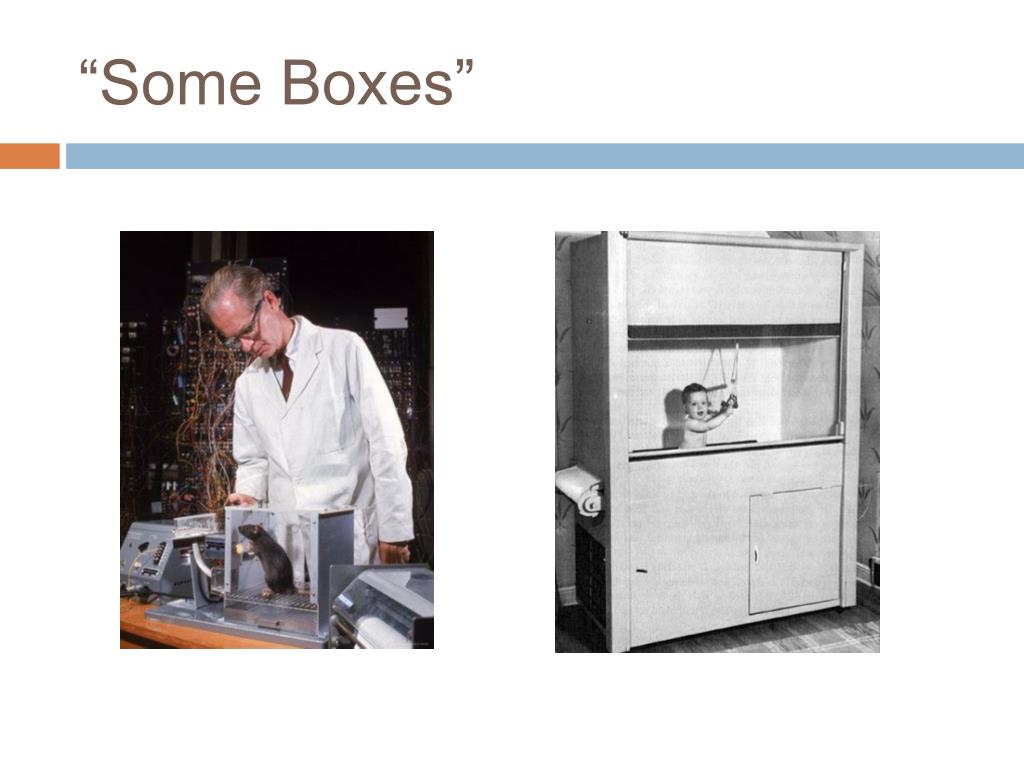 """Some Boxes"""