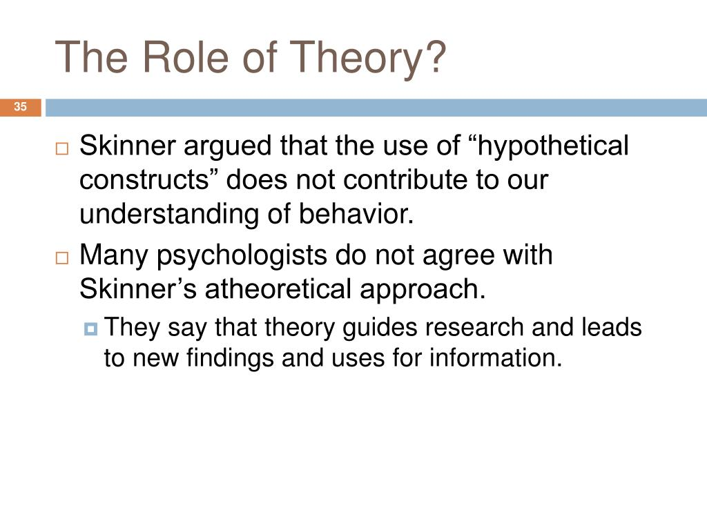The Role of Theory?