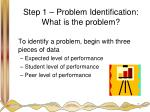 step 1 problem identification what is the problem
