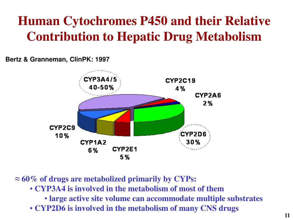 Human Cytochromes P450 and their Relative Contribution to Hepatic Drug Metabolism
