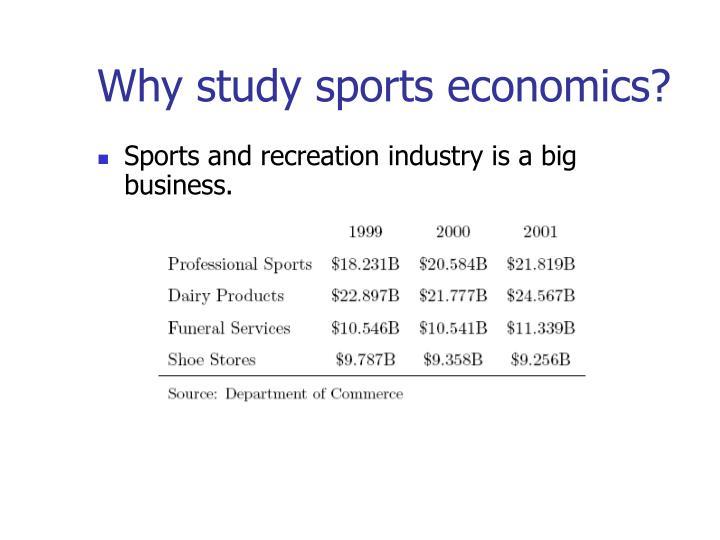 Why study sports economics