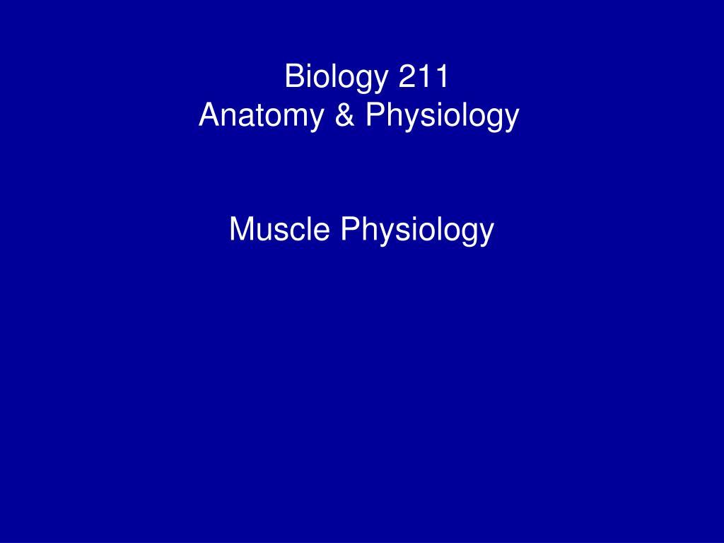 Fantastisch Anatomy And Physiology Biology Fotos - Menschliche ...