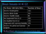 boys issues in k 12