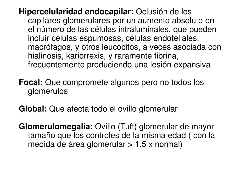 Hipercelularidad endocapilar: