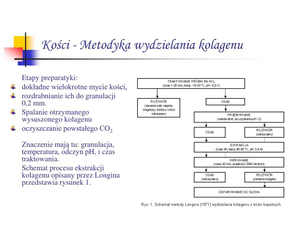 Datowanie kolagenu kostnego
