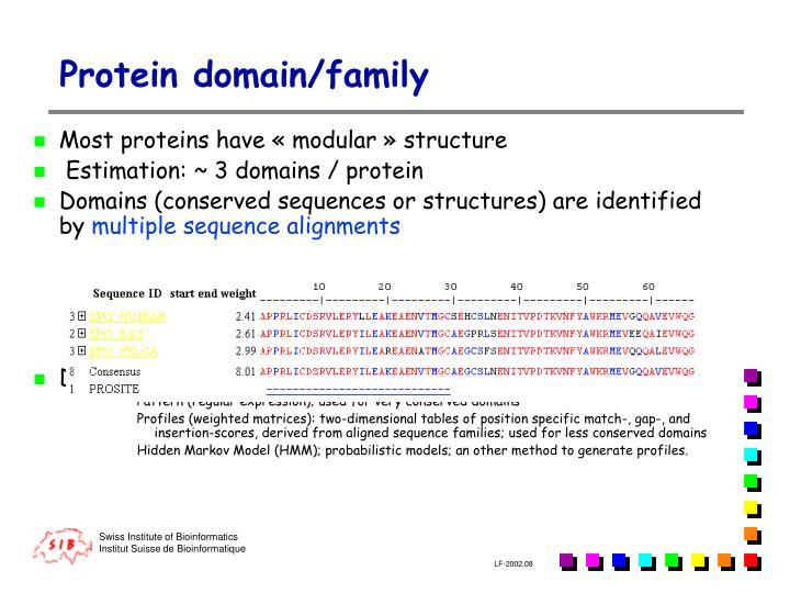 P rotein domain family