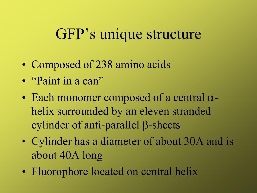 GFP's unique structure