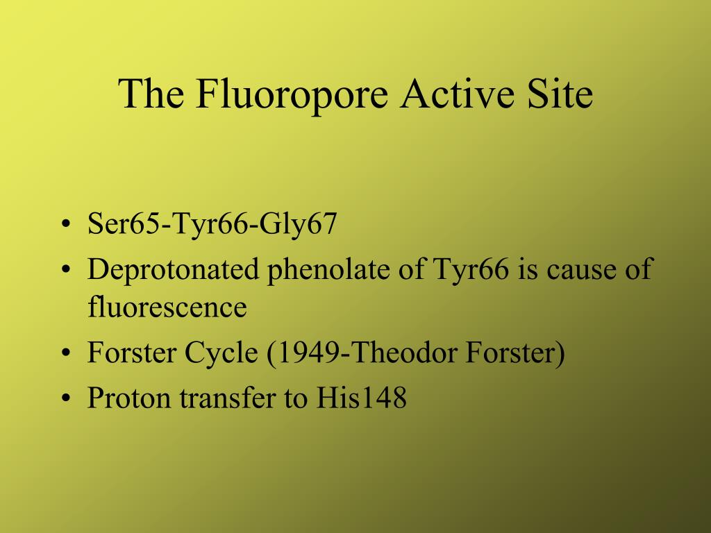 The Fluoropore Active Site