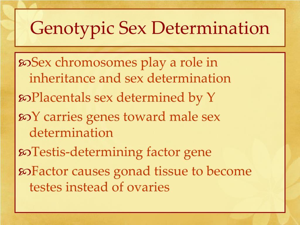 Genotypic Sex Determination