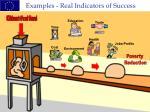 examples real indicators of success