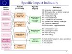 specific impact indicators24