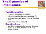 the dynamics of intelligence
