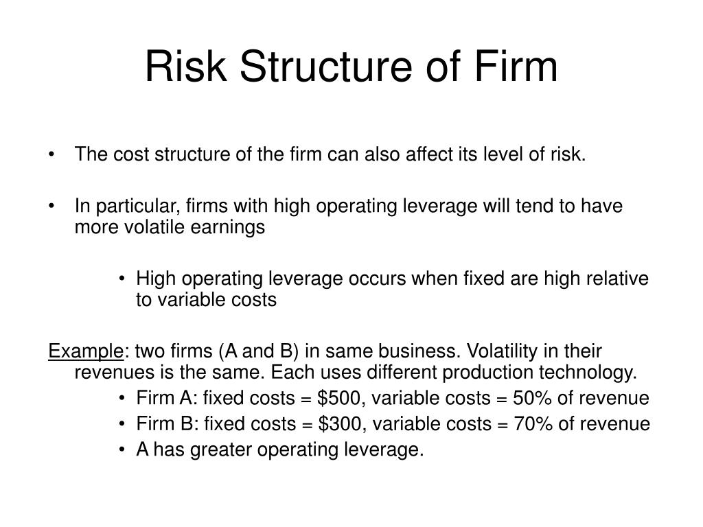 Risk Structure of Firm