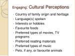 engaging cultural perceptions