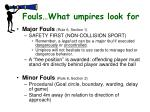 fouls what umpires look for